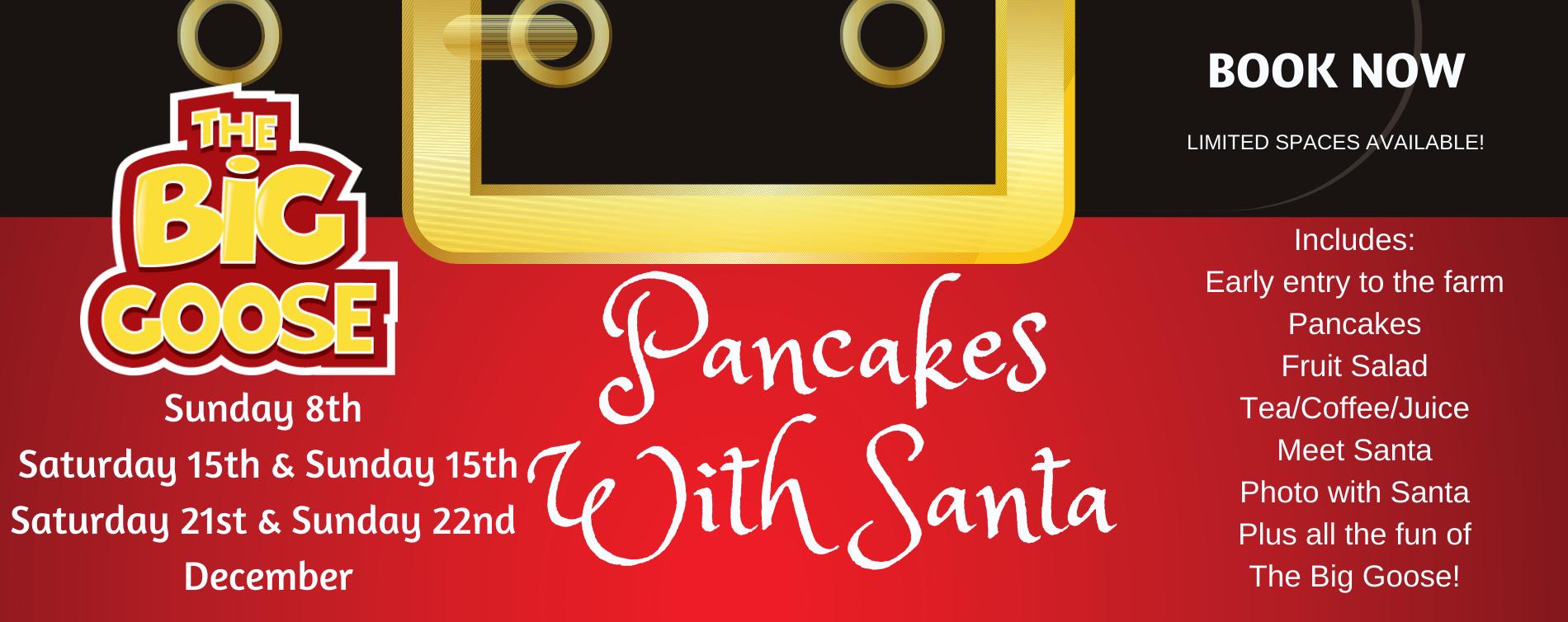 PancakesWith Santa (8)