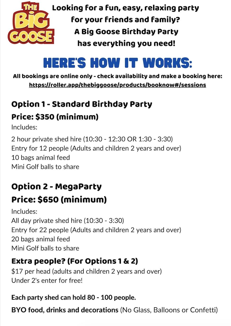 Website party jpeg